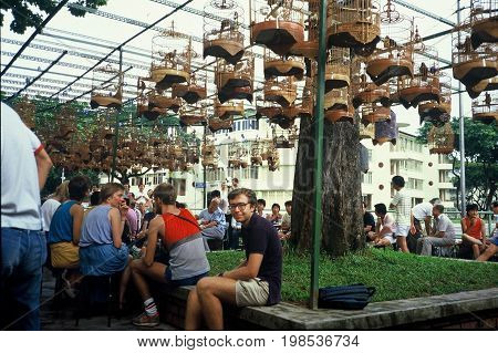 SINGAPORE / CIRCA 1990:  Bird lovers gather with their songbirds during the morning to drink coffee and tea, and listen to the songbirds in their cages.