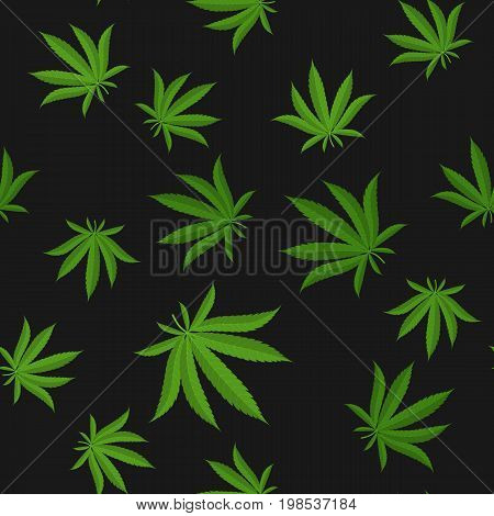 Cannabis leafs - seamless pattern. Vector illustration EPS10