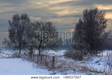 Wintertime sunset over meadows and forest with sun behind cloud, Podlasie Region, Poland, Europe