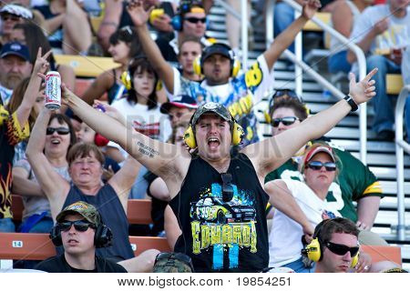 AVONDALE, AZ - APRIL 10: An enthusiastic fan in the grandstand at the Subway Fresh Fit 600 NASCAR Sprint Cup race on April 10, 2010 in Avondale, AZ.