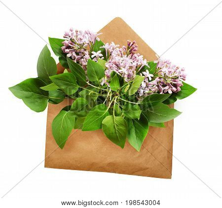 Opened craft paper envelope with lilac flowers bouquet isolated on white background