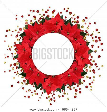 Christmas poinsettia flowers round arrangement with confetti and space for text isolated on white