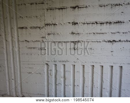 Detail Of A White Wall Texture