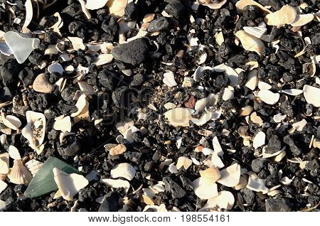 Pebbles, Shells And Small Debris Mixed With Sand