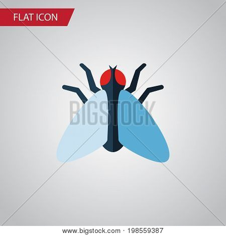 Housefly Vector Element Can Be Used For Tiny, Housefly, Fly Design Concept.  Isolated Tiny Flat Icon.