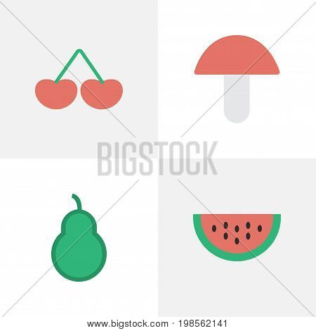 Elements Berry, Fungus, Melon And Other Synonyms Melon, Pear And Berry.  Vector Illustration Set Of Simple Horticulture Icons.