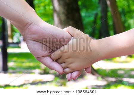 Mother holds her child's hand. Mother with her child walking in the Park holding hands.