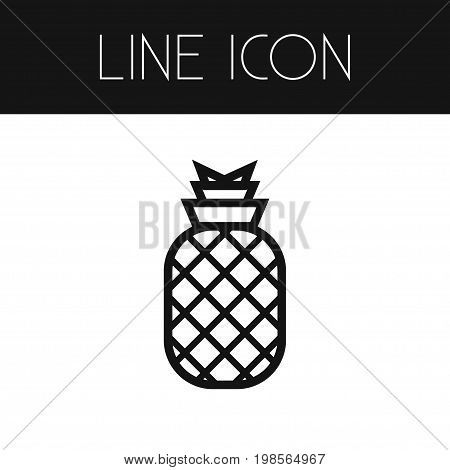 Ananas Vector Element Can Be Used For Ananas, Pineapple, Dessert Design Concept.  Isolated Dessert Outline.