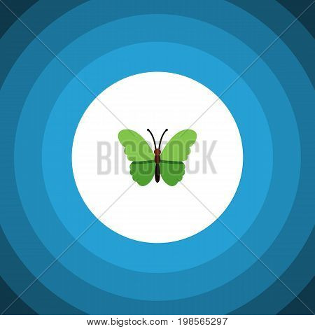 Milkweed Vector Element Can Be Used For Milkweed, Butterfly, Moth Design Concept.  Isolated Archippus Flat Icon.