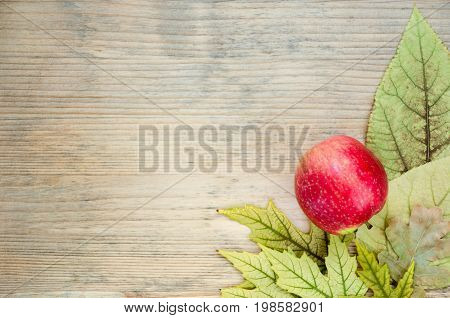 Colored autumn postcard - corner decorated with ripe red apple on yellow autumn leaves. Wooden background. Place for text