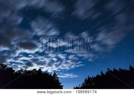 Fast Moving White Clouds Move Across A Deep Night Sky Full Of Stars, Tall Trees Silhouetted