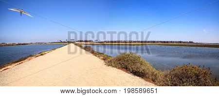 Path Along The Peaceful And Tranquil Marsh Of Bolsa Chica Wetlands