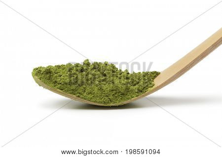 Japanese bamboo matcha spoon, chashaku, with green tea on white background