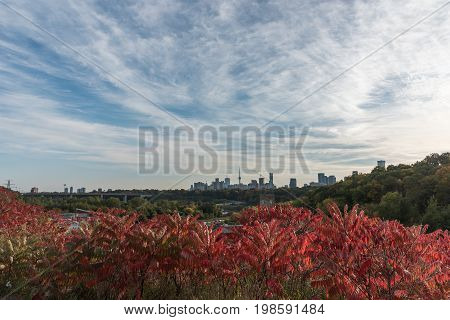 Panorama of Toronto in fall, Ontario Canada