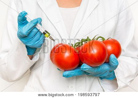 Gmo Scientist Injecting Liquid From Syringe Into Red Tomatoes