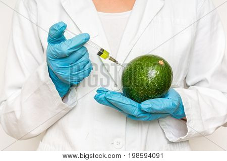 Gmo Scientist Injecting Liquid From Syringe Into Avocado