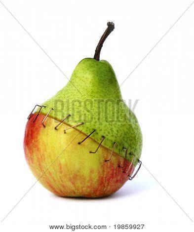 piece of an apple and a pear stapled together symbolizing the negative aspects of genetic engineering