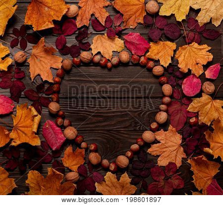 Flat lay frame in the form of a heart from autumn crimson and yellow leaves hazelnuts and walnuts on a dark wooden background. Selective focus.
