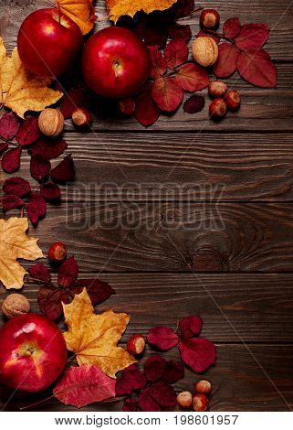 Flat lay frame of autumn crimson and yellow leaves hazelnuts walnuts and apples on a dark wooden background. Selective focus.