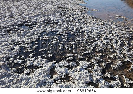 Badwater Pool in Death Valley. California. USA