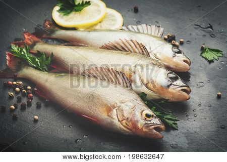 Fresh fish with aromatic herbs, spices, salt. Raw perch fish on slate tray dark vintage background, top view, healthy food, cooking, diet, nutrition concept