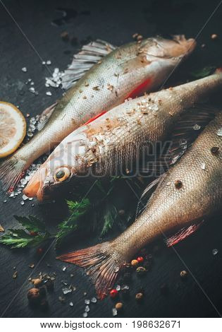 Fresh fish with aromatic herbs, spices, salt. Raw perch fish on slate tray dark vintage background, top view, healthy food, cooking, diet, nutrition concept. Preparing freshwater fish food