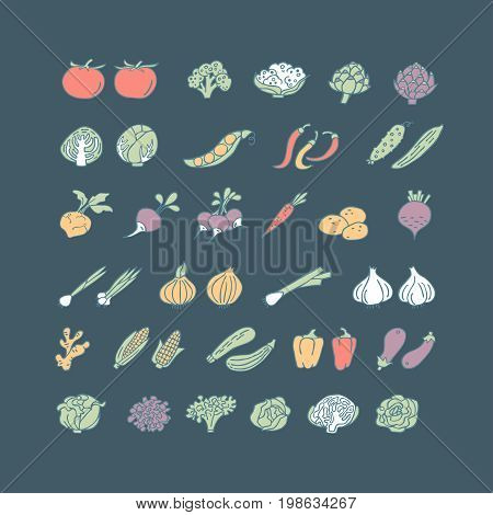 Vegetables hand drawn icon set in flat style. Perfect colorful vector design elements for decorations organic food pattern wrapping paper bioproducts wallpaper