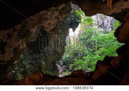 Vegetation And Nature In Phraya Nakhon Cave. Thailand