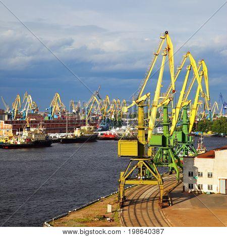 Port cranes in Saint-Petersburg, Russia