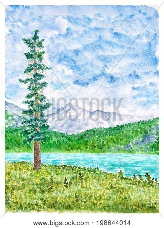 Summer Mountain Landscape with Tall Fir Tree and Tarn Watercolor Hand Drawn and Painted
