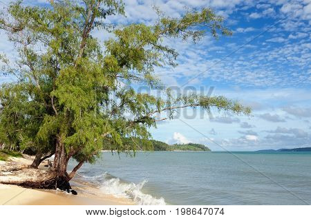 Cambodia. The beautiful coast Botum Sakor National Park near Sihanoukville To get to the mangrove forests and the almost deserted beaches