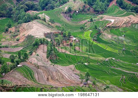 Aerial view of terraced rice fields in Yuanyang county, Yunnan, China. Yuanyang county lies at an altitude ranging from 140 along the Red River up to nearly 3000 metres above sea level in the Ailao mountains.