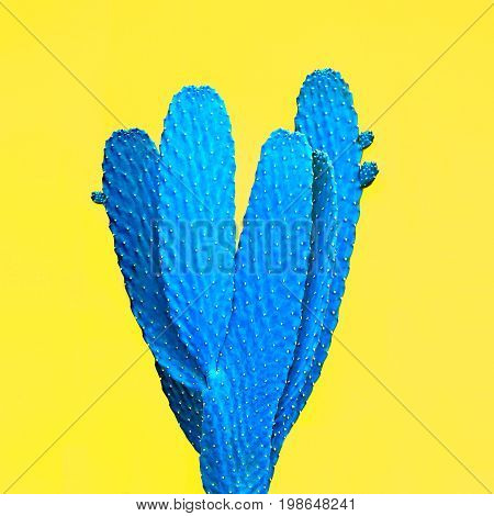 Cactus. Art Gallery Fashion Design. Minimal Stillife. Blue Neon cactus Mood, Surrealism. Trendy Bright Summer Colors. Creative Unusual Style. Fashion Concept, Yellow background