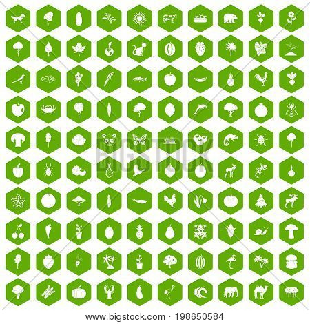 100 live nature icons set in green hexagon isolated vector illustration