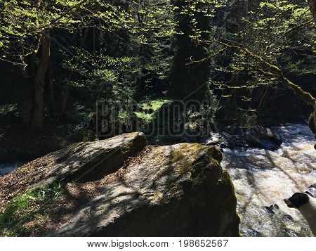 a large stone, a boulder, loomed over the river at a certain height on the other side of the river the forest with young spring leaves