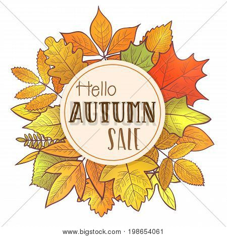 Background with colorful skeleton autumn leaves, hello autumn. Vector