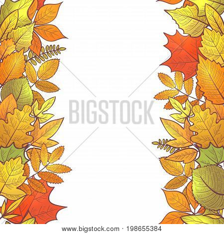 Seamless vertical borders with colorful skeleton autumn leaves, hello autumn. Vector