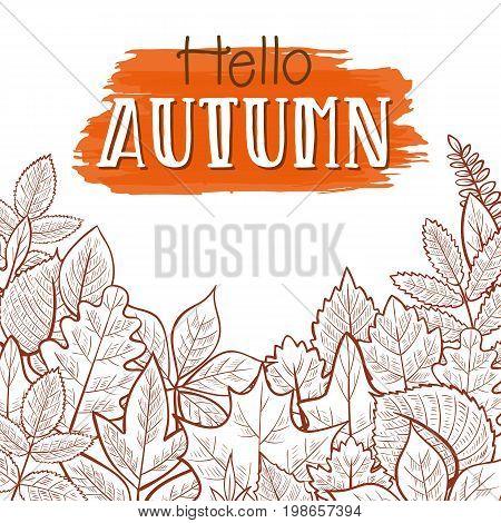 Background with skeleton autumn leaves, hello autumn. Vector