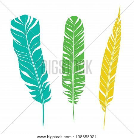 Elegant feathers set isolated on white background. Element for your design, decoration and artwork. Silhouette of three plumes different colors. Turquoise, green and yellow plumelets. Vector.