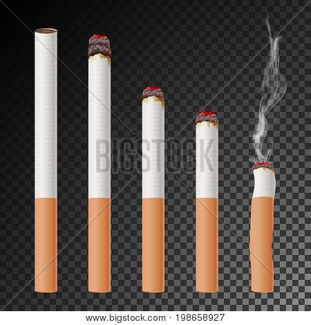 Cigarette Set Vector. Realistic Cigarette Butt. Different Stages Of Burn. Isolated Illustration. Burning Classic Smoking Cigarette