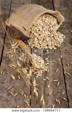 still life oat flakes in sack and oat ear on wooden table. Uncooked porridge