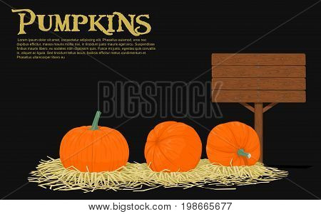 Pumpkins on straw with blank wooden signpost