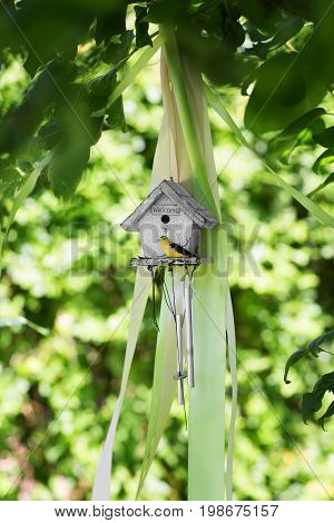 A wooden gray birdhouse on the natural background. The beautiful hand wood shelter for birds to spend the winter. The small nesting box with a yellow bird on the blurred background.