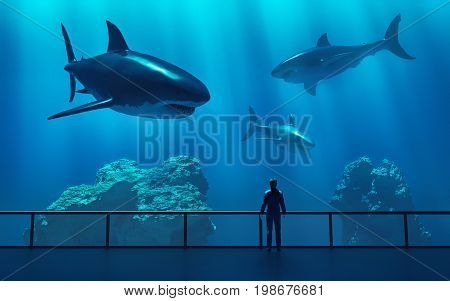 Silhouette of a man looking at fish in the aquarium. This is a 3d render illustration