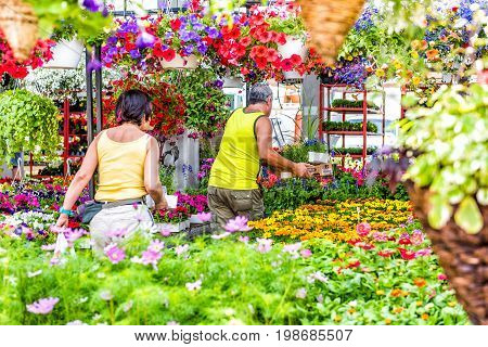 Montreal Canada - May 28 2017: Florist store with many colorful flowers and people walking at Jean-Talon farmers market