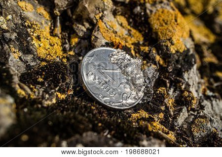 Two rubles on a stone and melting snow
