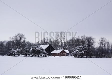 Hudson, Quebec - January 19, 2013 -- Wide view of a snow covered house surrounded by snowy bare trees near Hudson, Quebec on a bright overcast day in February.