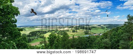 Panorama from a high altitude to a valley with flying birds, fields and trees. Hof, Bavaria, Germany