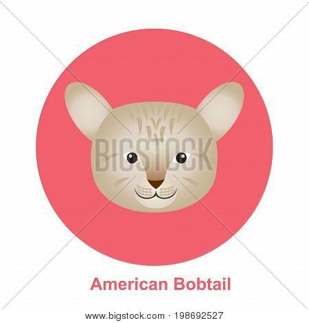 Colorful Cartoon American Bob Tail Cat in Circle happy and running on white background - Vector clipart illustration