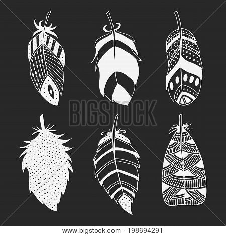 Cute hand drawn set of different feathers. Bird feather collection in doodle style. Vector illustration.